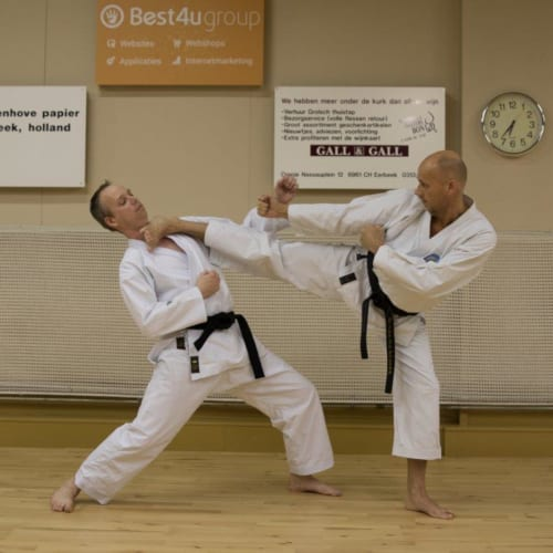 ronald karate eerbeek